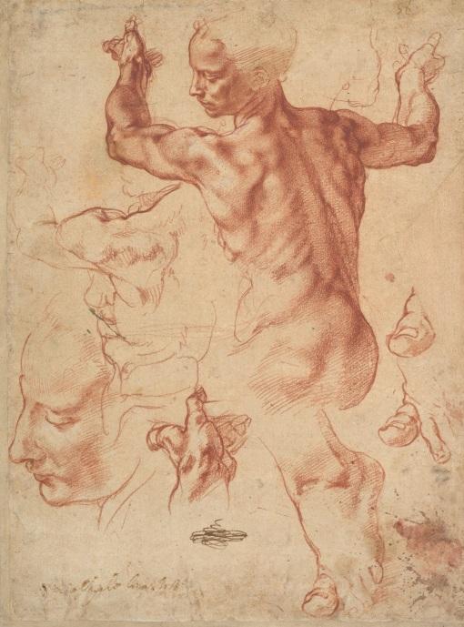 Michelangelo Buonarroti, Studies for the Libyan Sibyl, The Metropolitan Museum, New York